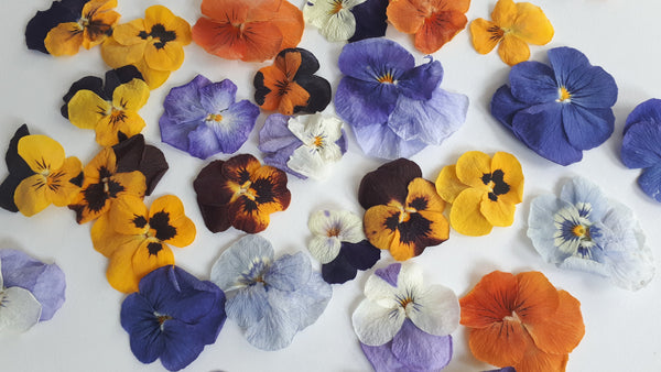 Edible Freeze Dried Organic Pansies