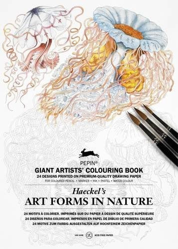 Giant Artists' Colouring Book - Artforms in Nature