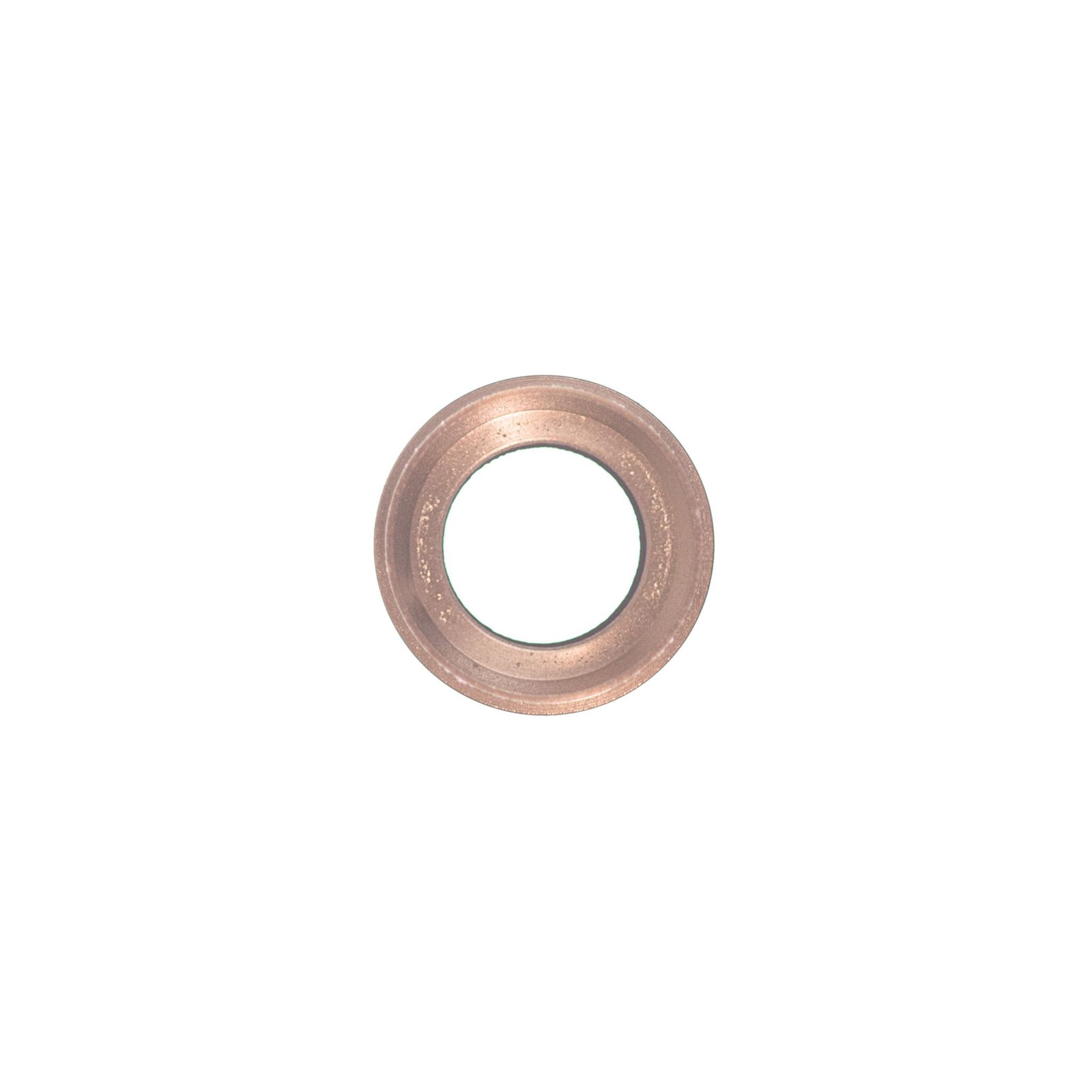 822-10167_etech_parts_iphone_6s_rose_gold_rear_camera_hold_with_lens_9278-edit_RVINWG62JFMK.jpg