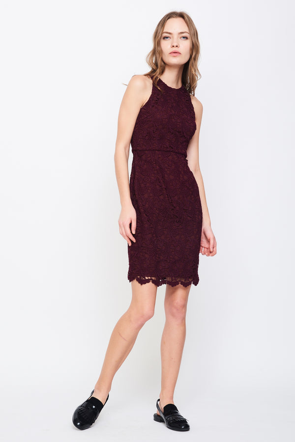 Tailored Lace Dress In Maroon