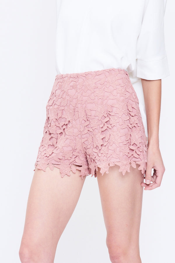 High Waist Lace Shorts In Pink