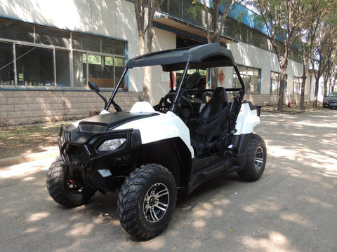 Smart Beach Buggy Beautiful UTV Model AOS200 - Free Shipping Pros