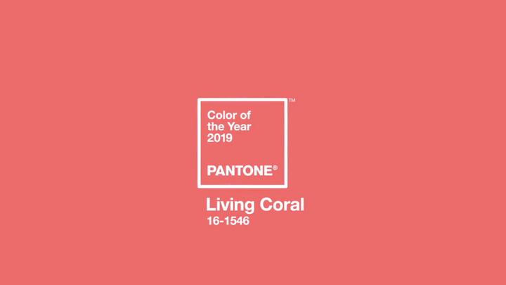 'Living Coral' Pantone Colour of the Year 2019