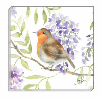 British Birds Robin Canvas Wall Art