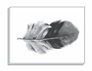 Feathers Black Oblong Canvas Wall Art