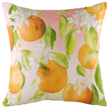 Fruit Oranges Cushion