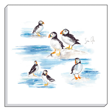 Jennifer Rose Gallery Coastline Puffins Canvas Wall art