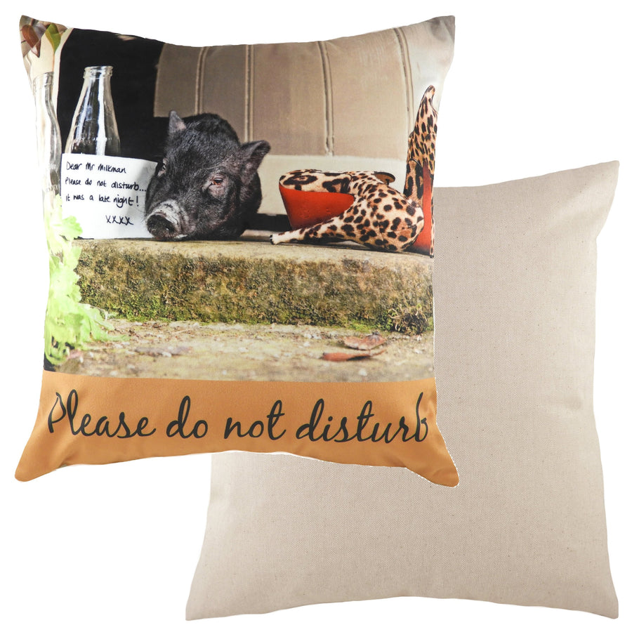 Kitchy Do Not Disturb Cushion