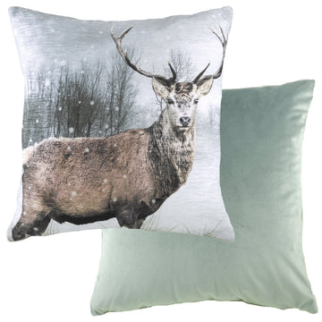 Photo Stag Cushion