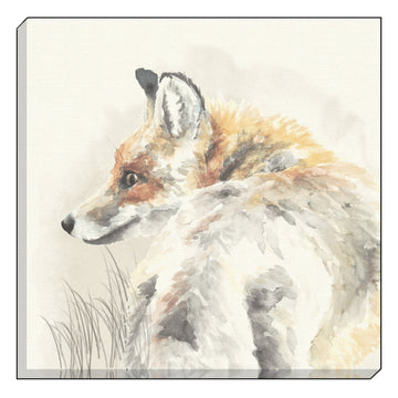 Watercolour Fox Canvas