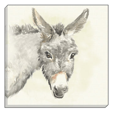Watercolour Donkey Canvas