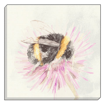 Watercolour Bee Canvas