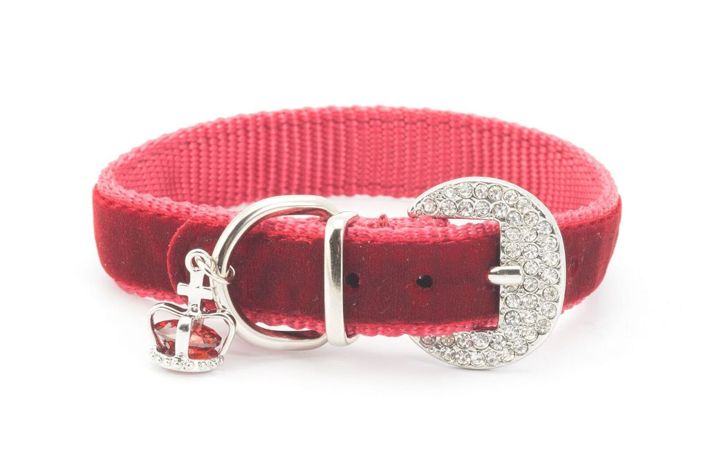 Ancol Small Bite Crown Jewel Collar Ruby Extra Small 18-22cm