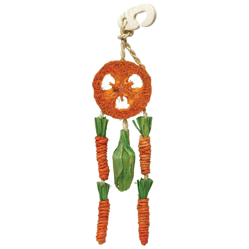 Boredom Breaker Carrot Dream Catcher for Small Animals