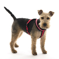 Company of Animals Red Reflective Comfy Soft Fleece Dog Harness