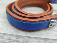 "Rosewood Wag N Walk Designer Lead Royal Blue 3/4"" X 40"""