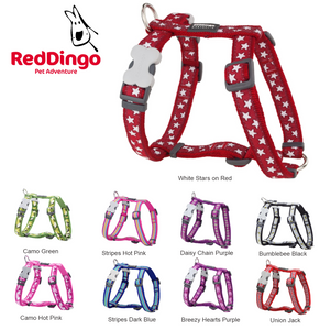 Red Dingo Designer Dog Harness