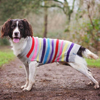 Sötnos Super Stripe Dog Jumper