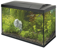Superfish Start 100 Complete Tropical Aquarium Fish Tank Set 105L