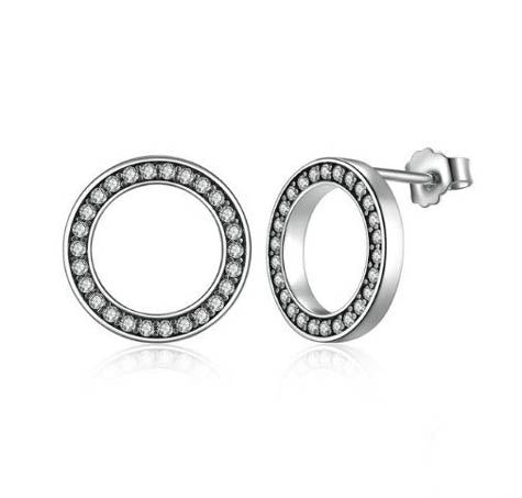 Circle of Life Silver Earrings Women