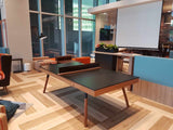Roma Table Tennis (Designer Range, Full Customisation)