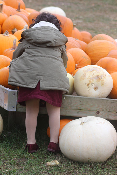 pumpkin patch farm london