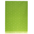 Pear Halves Green Gift Wrap 2 sheets