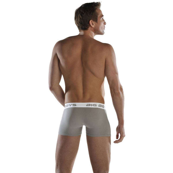 Big Boys Grey Boxer Briefs