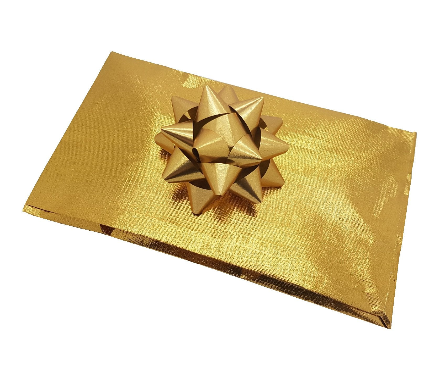 Gold Pleated Envelope Gift Bag
