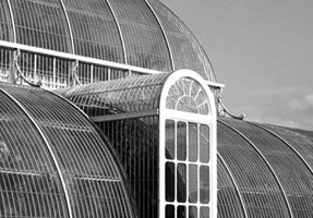 Black'n'White - The Palmhouse at Kew (#WATT_L_1018)