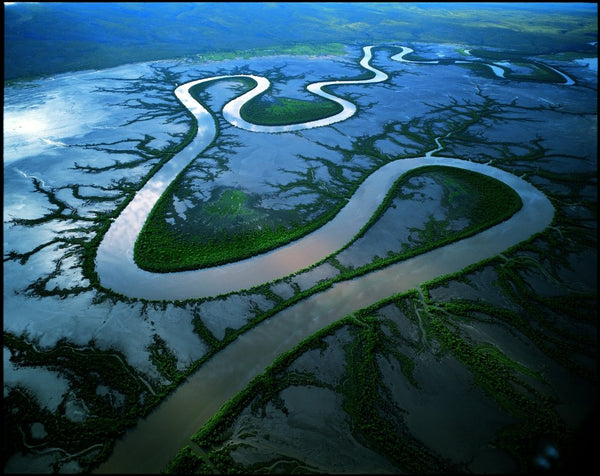 Wildlife Photographer of the Year - The great delta (#WILDLIFE_14)