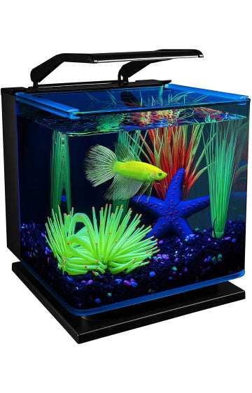 GloFish 3 Gallon Betta Aquarium Kit