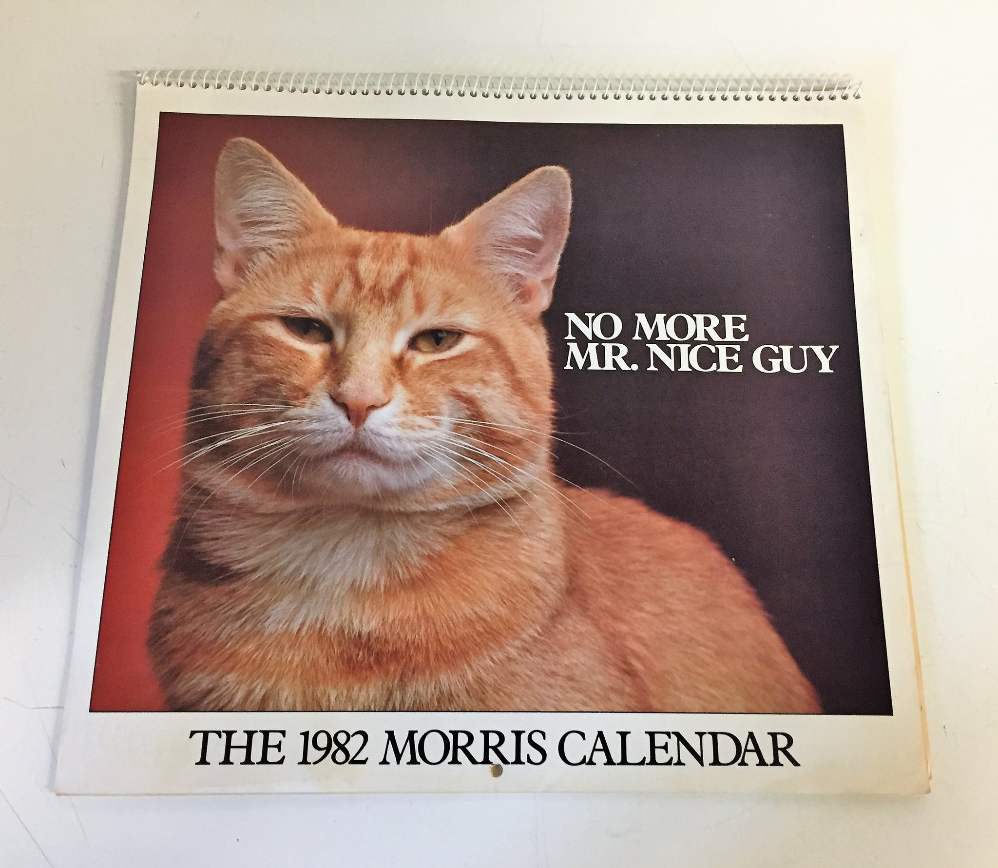 Vintage 1982 No More Mister Nice Guy Morris Calendar 9-Lives Advertising