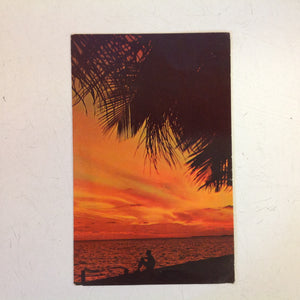 Vintage 1973 Color Postcard Florida Sunsets