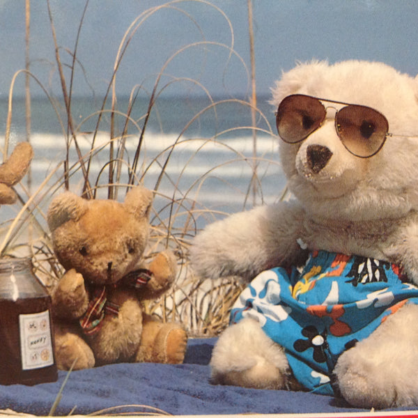 Vintage Color Postcard Gulf Shores Alabama is Great But We Miss You Teddy Bear Beach Party