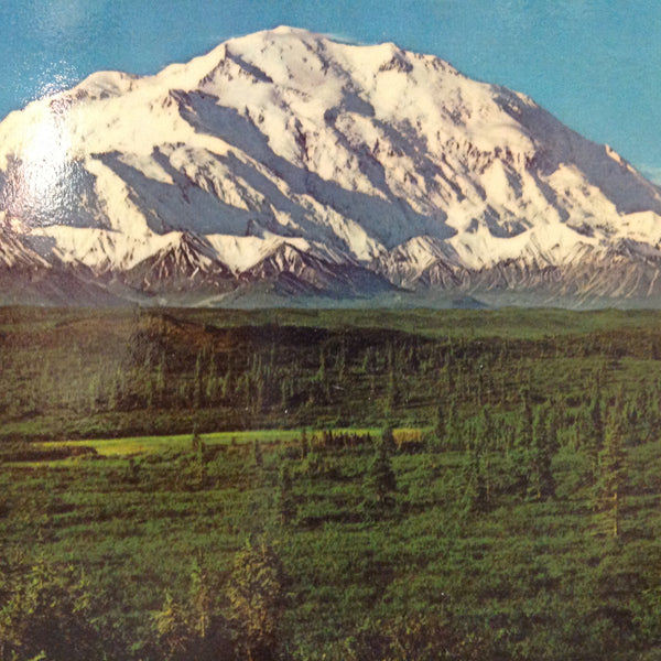 Vintage Scalloped Edged Color Postcard Magnificent Mount McKinley Alaska Highest in the US