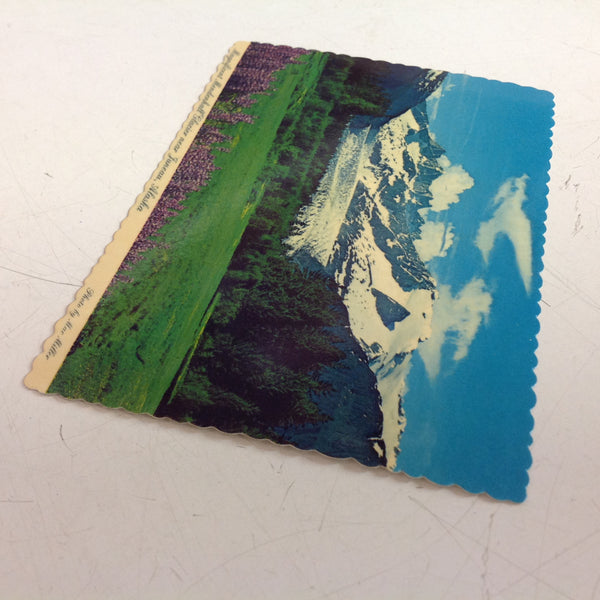 Vintage Arctic Circle Enterprises Scalloped Edged Color Postcard Magnificent Mendenhall Glacier Mac Miller Photo North of Juneau Alaska