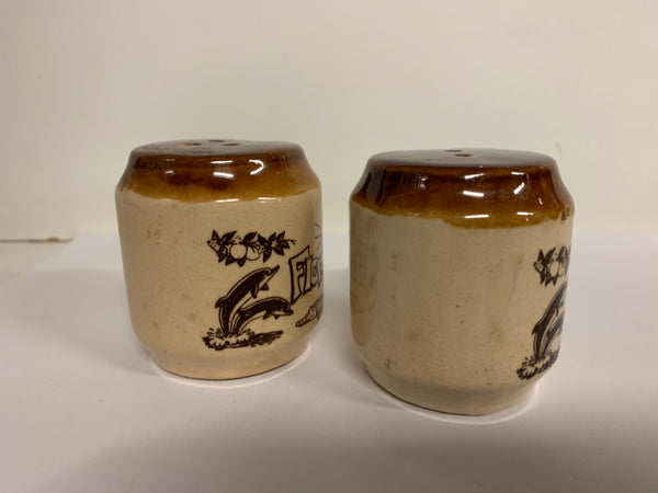 Vintage Florida Souvenir Ceramic Salt & Pepper Shakers Dolphins Travel Trip