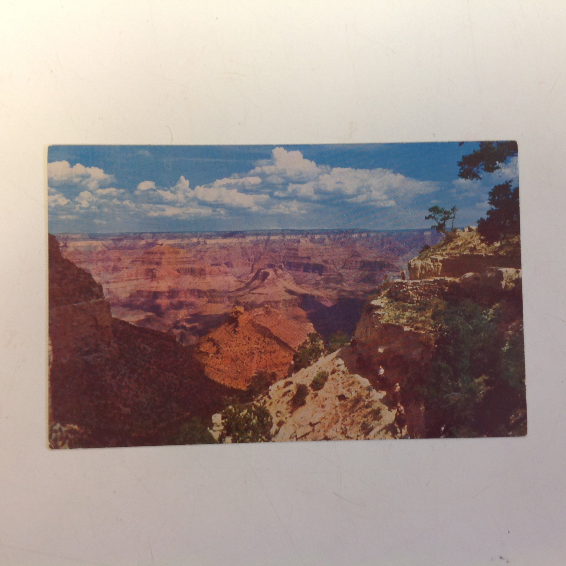 Vintage Fred Harvey Souvenir Color Photo Postcard Bright Angel Trail Grand Canyon National Park Arizona