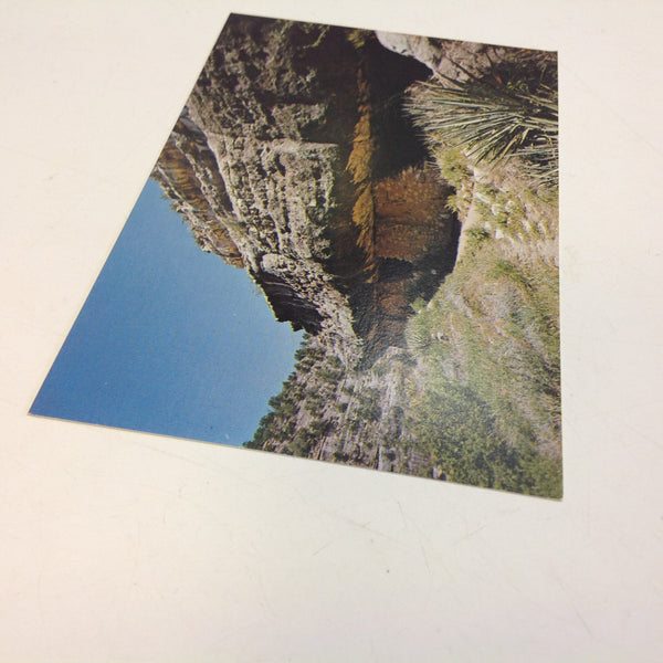 Vintage Color Postcard Ruins on Island Trail Walnut Canyon National Monument Arizona