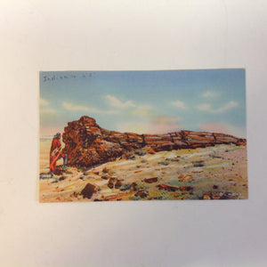 Vintage Curteich Color Postcard Indian on the Petrified Forest Arizona