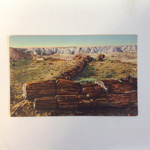 Vintage Curteich Color Postcard The Twin Sisters in Second Forest Petrified Forest Arizona