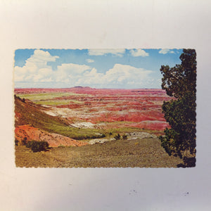 Vintage Petley Studios Souvenir Scalloped Edge Plastichrome Color Postcard Colorful Painted Desert Little Colorado River Grand Canyon National Park Holbrook Arizona