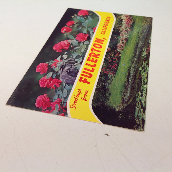 Vintage Dexter Press Repro Souvenir Color Postcard Primrose Creek Banks Greetings From Fullerton California