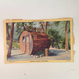 Vintage Mid Century Curteich Art Colortone Fulmer Foto Postcard End of the Trail Log Restroom Redwood Highway California