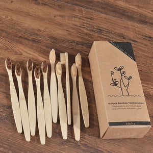 Eco-Friendly Bamboo Tooth Brushes