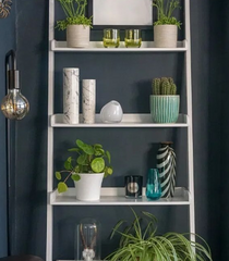 Shelving Decoration