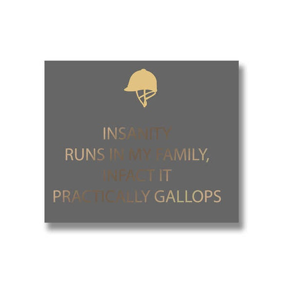 Insanity Gallops Plaque