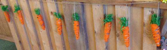 Garland Of 10 Carrots