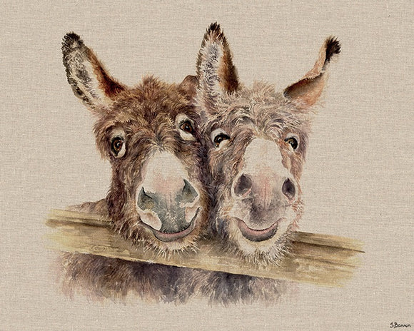 Best Of Friends Donkey Canvas
